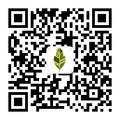 zhifeng@活书教育