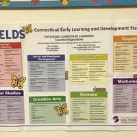 幼儿园的孩子到底该学什么?