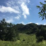 2017暑假自然之旅